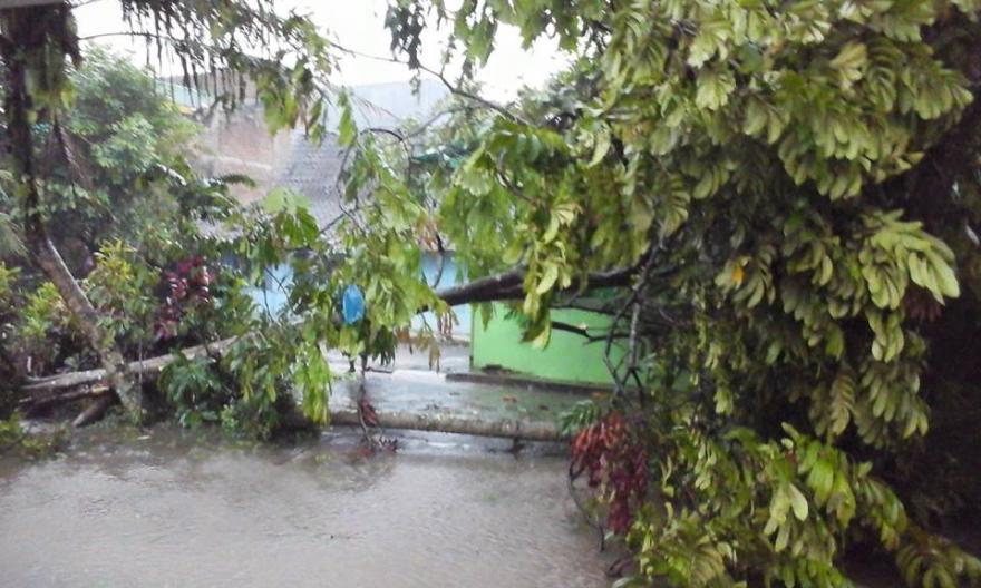 Image : Hujan Deras Disertai Angin Kencang Tumbangkan Pohon, Rusak Rumah Warga dan Banjiri Sarana Publik